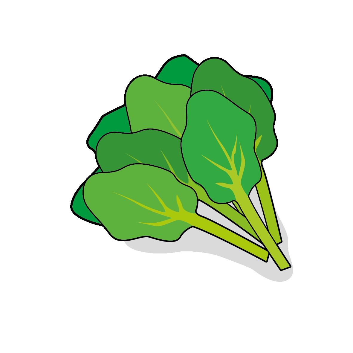 Icone d'épinards, ailmacocotte.com