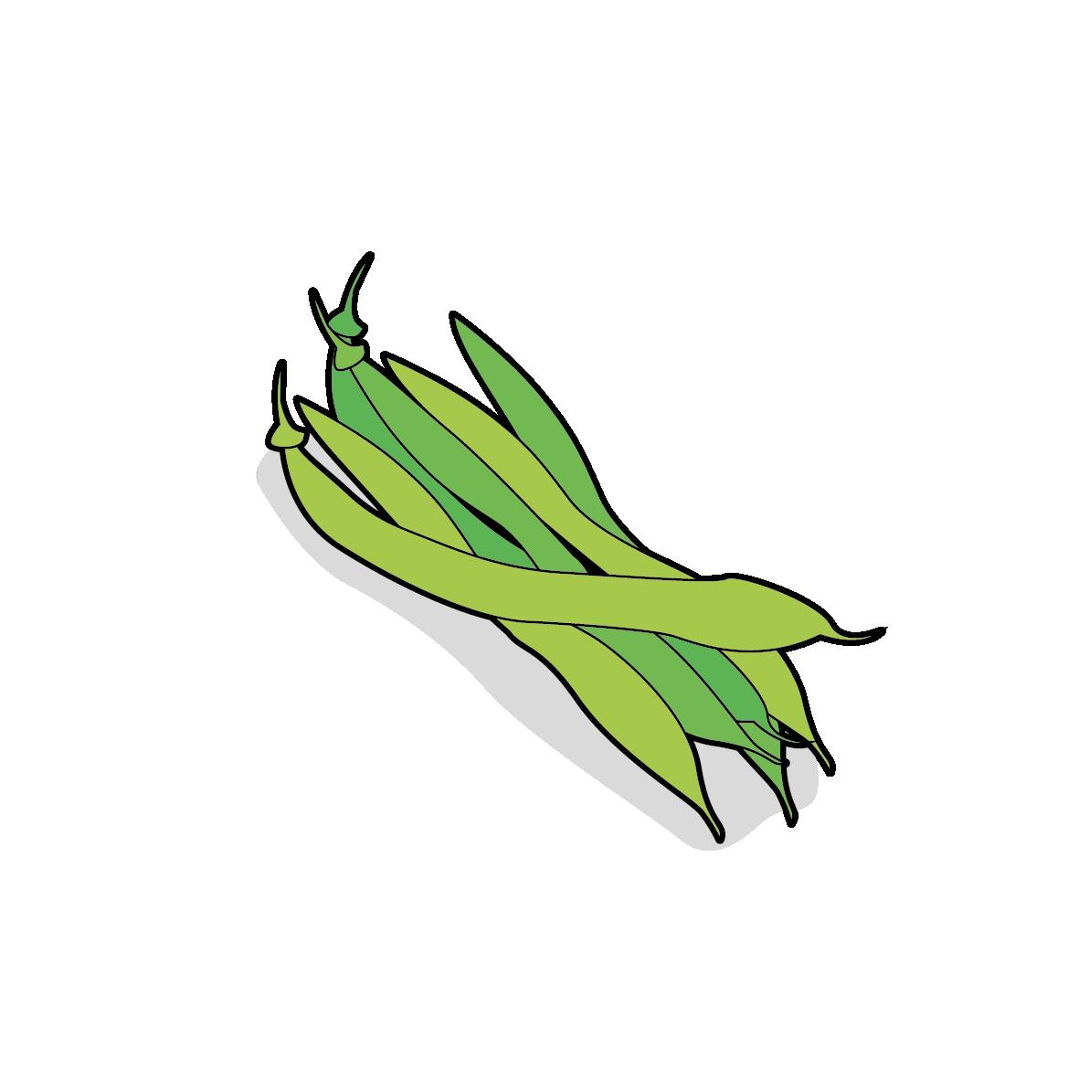 Icone de haricots verts, ailmacocotte.com