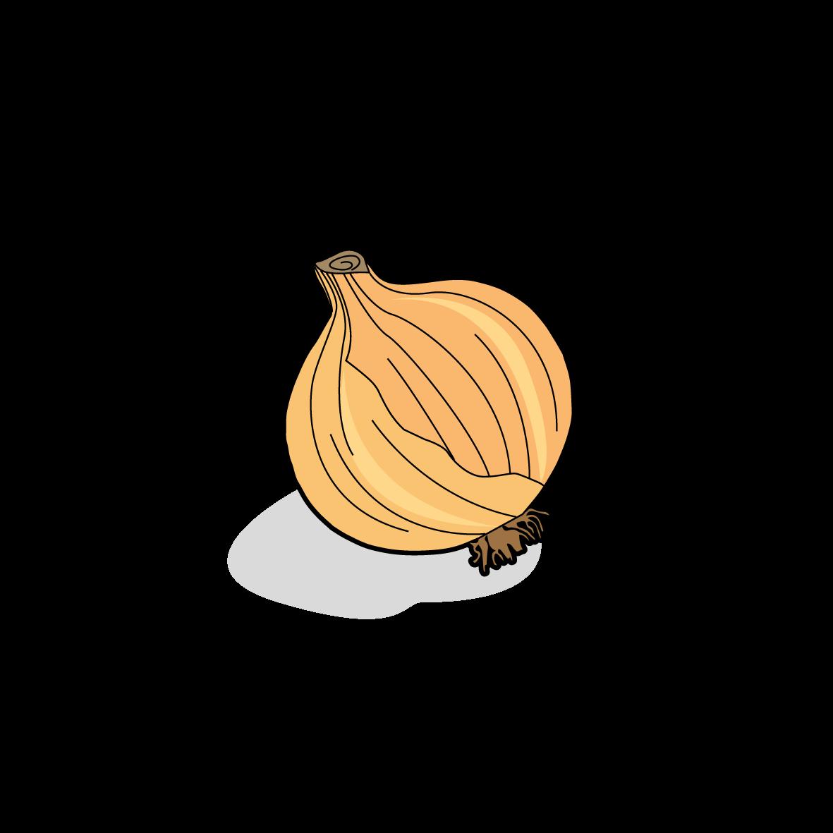 Icone d'un potiron, ailmacocotte.com