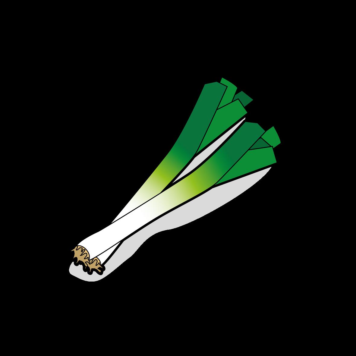 Icone d'un poireau, ailmacocotte.com
