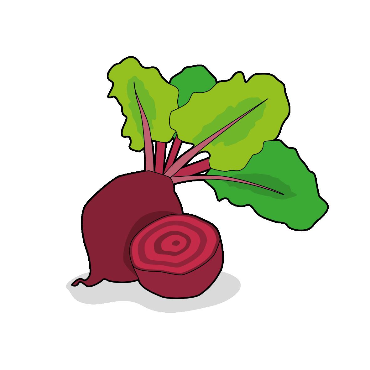 Icone d'une betterave, ailmacocotte.com