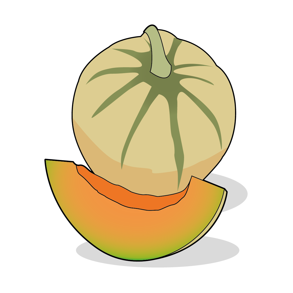 Icone d'un melon, ailmacocotte.com