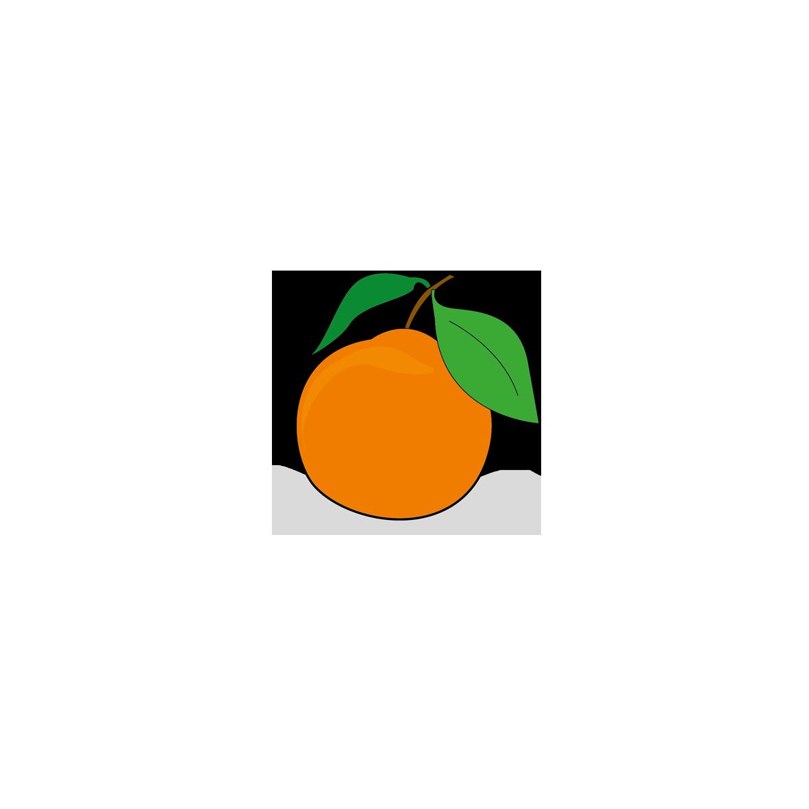Icone d'une orange, ailmacocotte.com