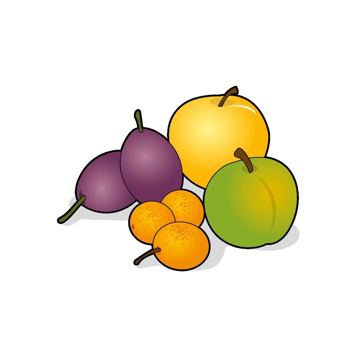 Icone de prunes, ailmacocotte.com