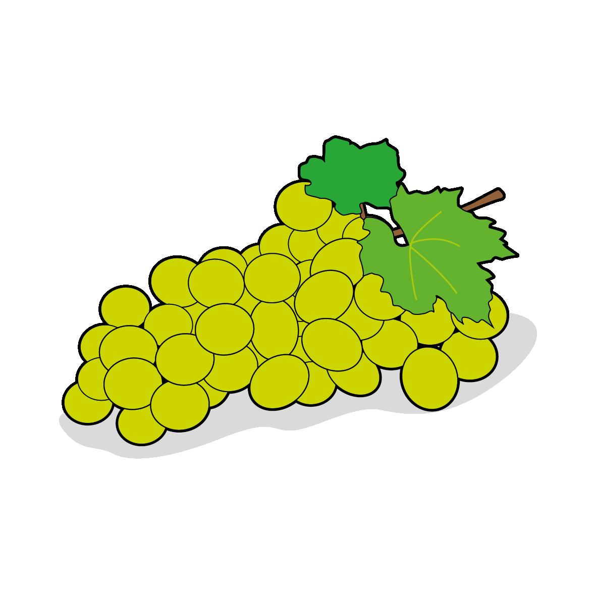 Icone d'une grappe de raisin, ailmacocotte.com