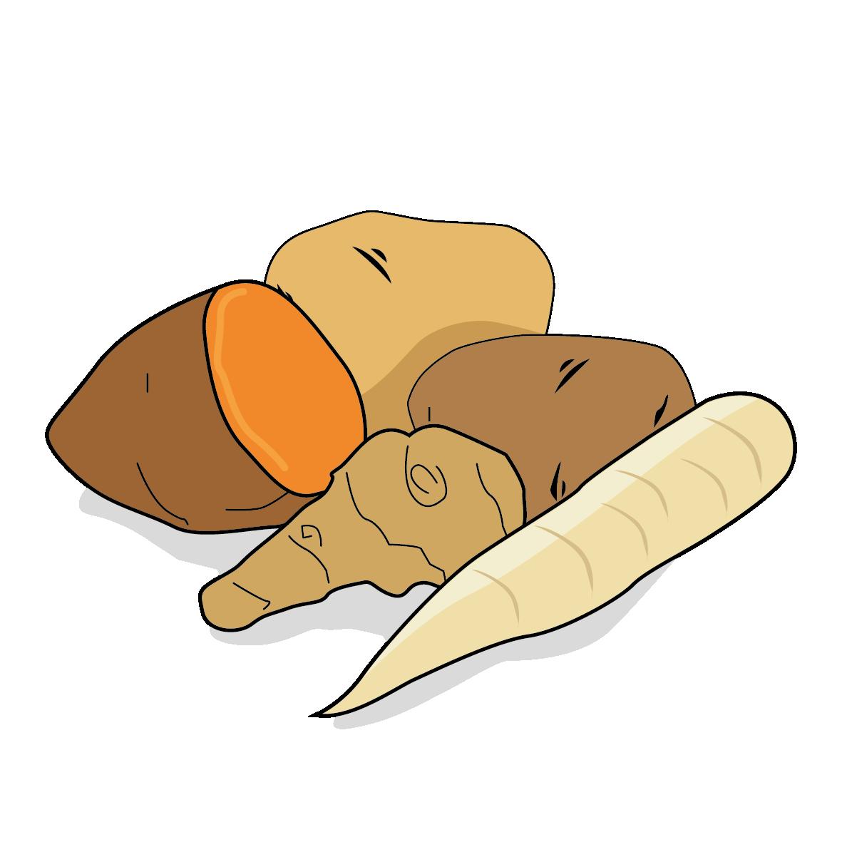 Icone d'un panais, ailmacocotte.com