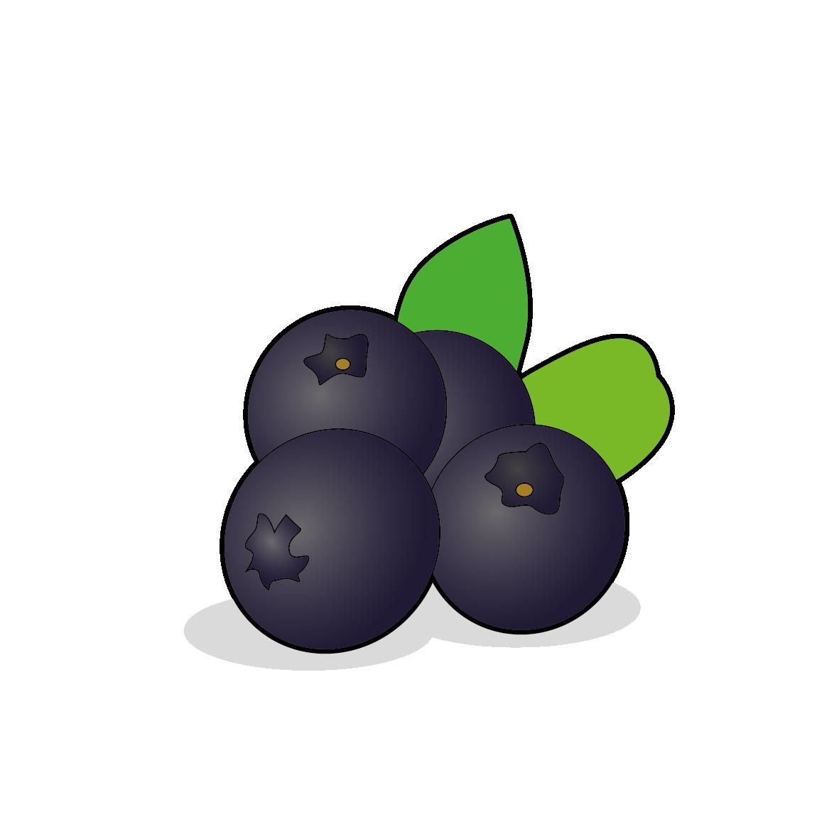 Icone de myrtilles, ailmacocotte.com